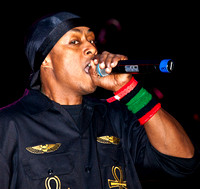 Professor Griff, Hopscotch 2010